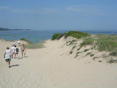 Cesta na pláž přes písečné duny (nahrál: Mira)