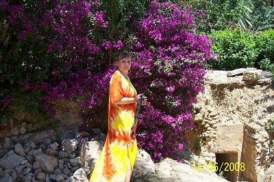 Tunisko - Nádherné keře Bugenvilie. (nahrál: kůzlenka)