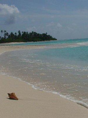 Karibský ráj